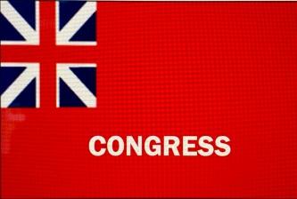 Congress Liberty flag